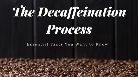 coffee decaffeination process