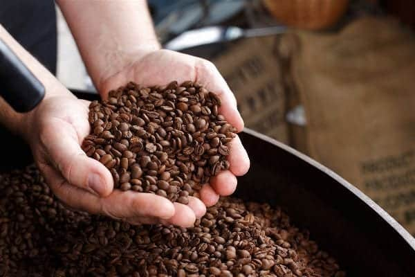 Hand removing roasted coffee beans