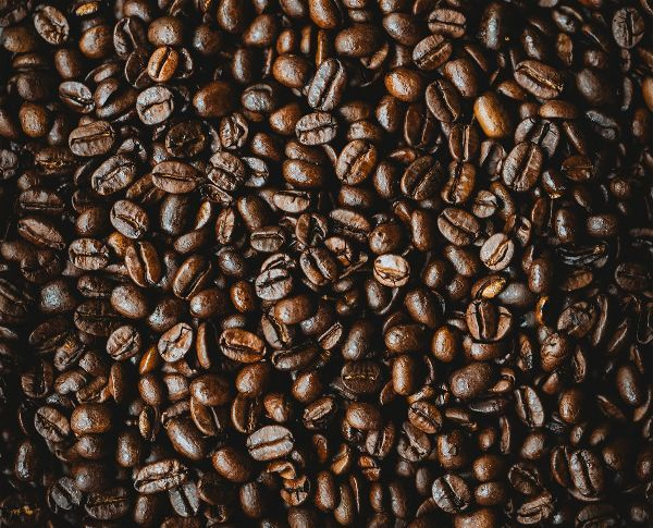 How to dry oily coffee beans