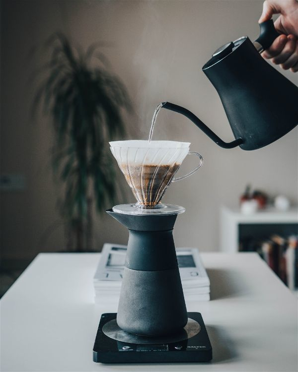 French Press vs Pour Over vs Percolator